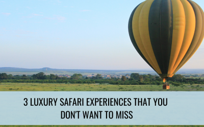 3 Luxury Safari Experiences That You Don't Want to Miss