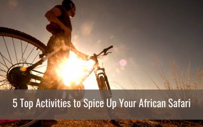 5 Top Activities to Spice Up Your African Safari